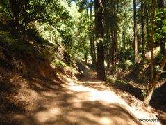 french trail/tres sendas