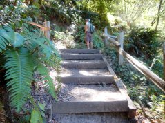 to upper huckleberry path