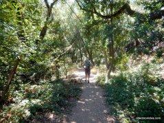 upper huckleberry path
