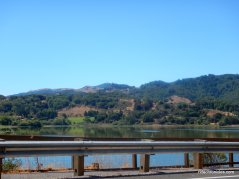 stafford lake