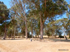 point pinole picnic area