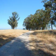marsh trailmarsh trail