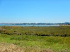 marsh trail bay views