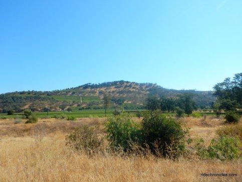 hwy 128 E-napa valley