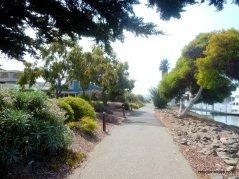 double tree path
