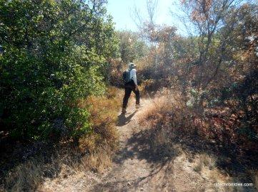 bald ridge trail