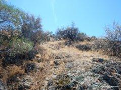 scramble uphill