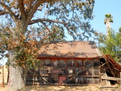 jackson ranch