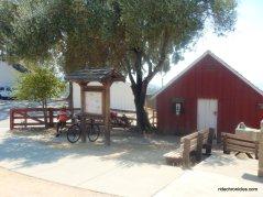 coe ranch