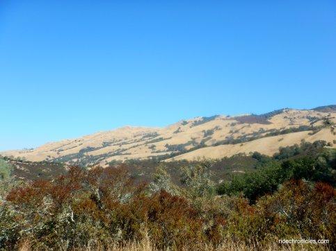 w fossil ridge tr