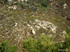 w fossil ridge rd