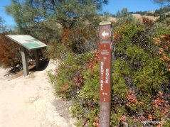 Civilian Conservation Corps Trail