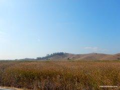 coyote hills reg park