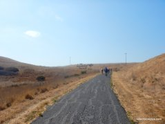 nike hill