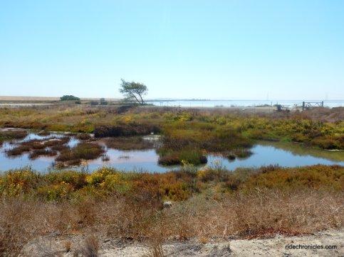 napa-sonoma marshes