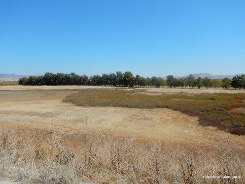 napa-sonoma marsh wildlife area
