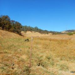 dunn creek area