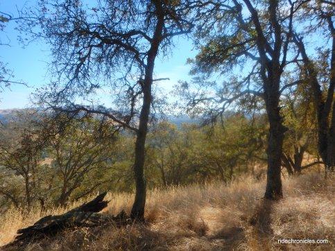 blaisdell trail