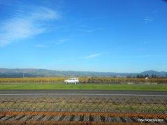 napa valley vine trail