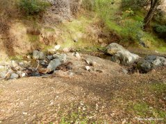 donner cabin site tr