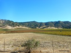 lower chiles valley rd