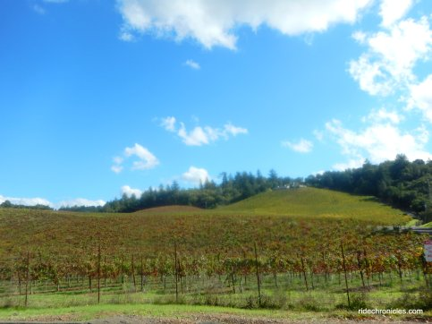 dry creek valley