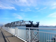 alex zuckermann bay bridge trail