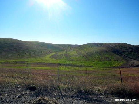 dunnigan hills