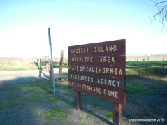 grizzly island wildlife area
