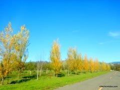 gordon valley rd