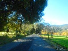 wooden valley cross rd