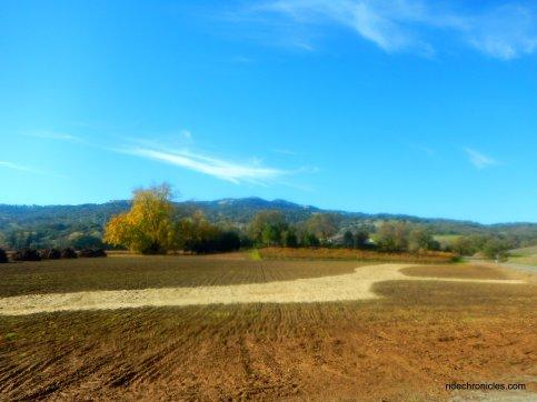 suisun valley