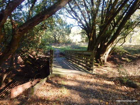 tuteur loop trail