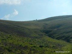 prairie ridge