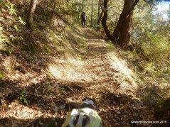 palisades trail