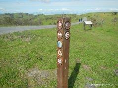 conlon trail junction