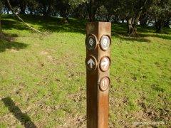 olive grove trail