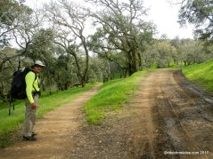 ridgeline trailridgeline trail