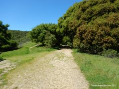 brandon trail