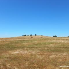 campo seco rd