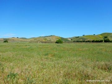 solomon hills