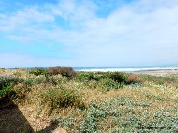 jalama beach