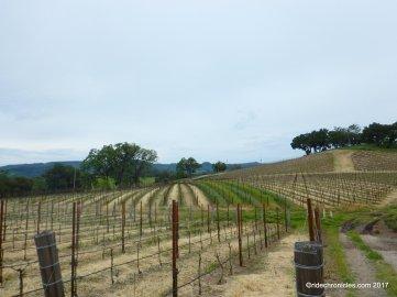 justin vineyard winery