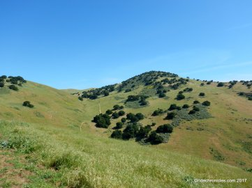 brushy peak