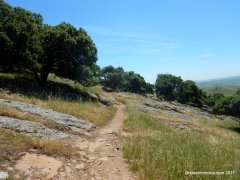 brushy peak loop trail