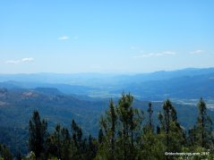 mt st helena trail views