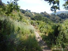 mccorkle trail
