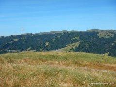 cerro este overlook
