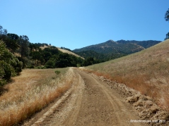 donner canyon rd