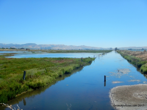 huichica creek wildlife area